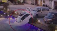 [Video] Perro puso en marcha el carro que su amo dejó prendido y lo mandó a un estanque