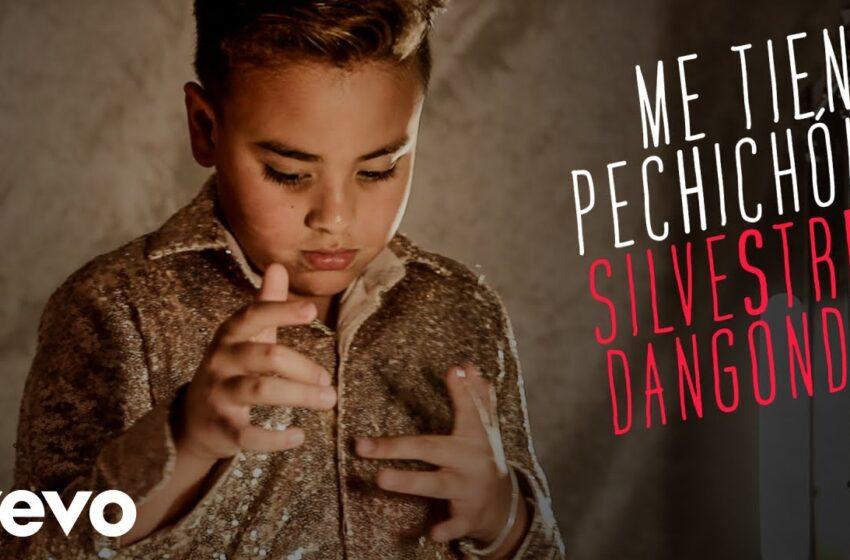 04.Silvestre Dangond – Me Tiene Pechichón