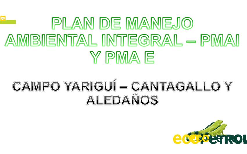 Presentación del plan de manejo ambiental integral- PMAI 2020